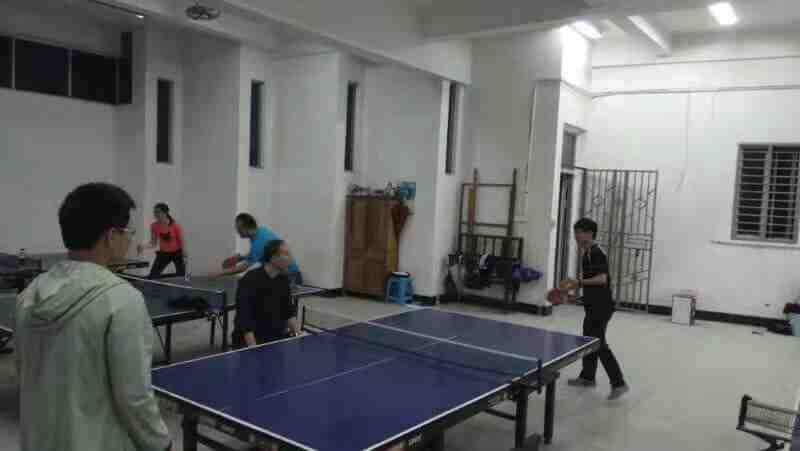 2019年教职工活动之乒乓球